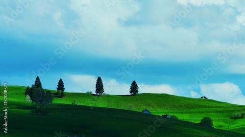 Hügel mit vier Bäumen und blauem Himmel