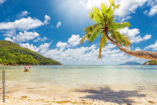 Tropical beach in Caribbean sea.