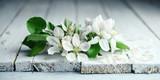 Fototapeta Kwiaty - kwiaty jabłoni na starej jasnej desce