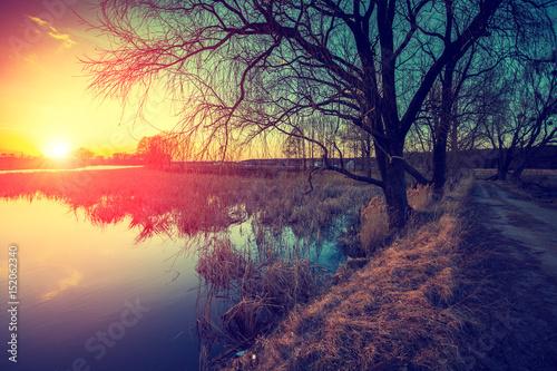 dzika-natura-jesien-wiejski-krajobraz-drzewa-bez-lisci-w