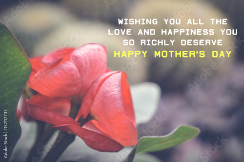 Poster Waterlelies happy mother's day quote with red flowers background