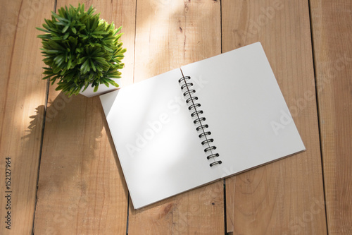 Photo sur Toile Biere, Cidre Blank white paper of book and small tree. top view with copy space