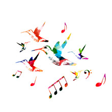Colorful Hummingbirds With Music Notes Isolated Vector Illustration
