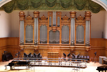 Details Of Organ