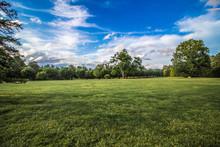 Blue Skies Green Grass