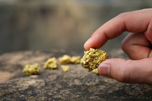 The Pure Gold Ore Found In The...