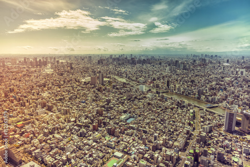 Foto op Plexiglas Tokyo Tokyo skyline panorama, aerial view, Japan. Vintage colors with light leaks
