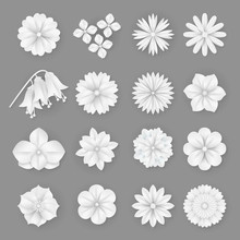 Vector Paper Flowers Set. 3d O...