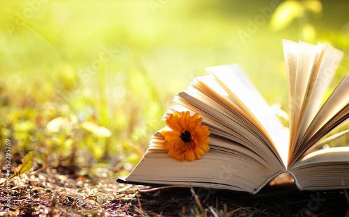 Tuinposter Zwavel geel opened book in yellow autumn