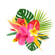 canvas print picture -  tropical flowers on a white background