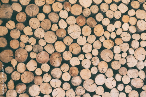 Poster Firewood texture Fire wood natural background texture, chopped firewood vintage image for Your design