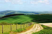 South Downs National Park In Sussex.