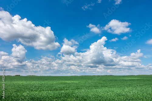 Foto auf Gartenposter Landschappen Spring or summer landscape with green meadow and blue sky