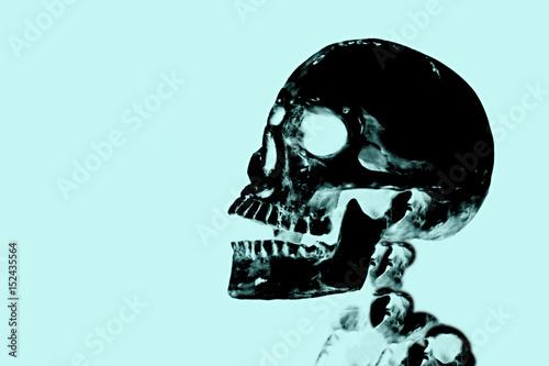 Human skull X-ray look image Wallpaper Mural