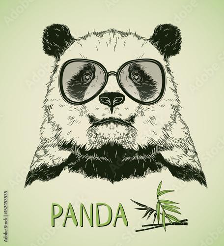 Deurstickers Hand getrokken schets van dieren Hand drawn portrait of Panda Bear with glasses