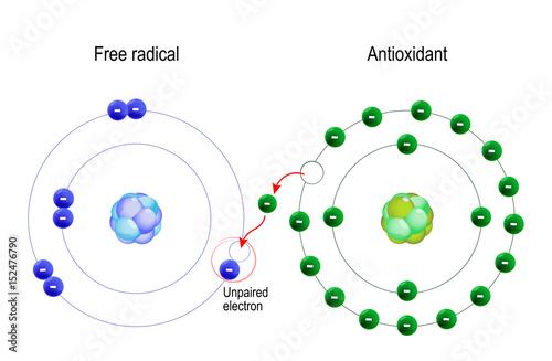 free radical and Antioxidant