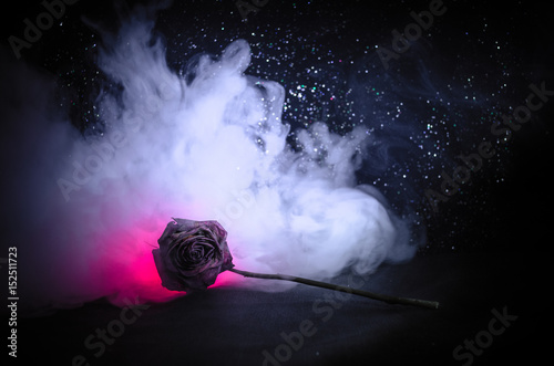 Fotografía  A wilting rose signifies lost love, divorce, or a bad relationship, dead rose on