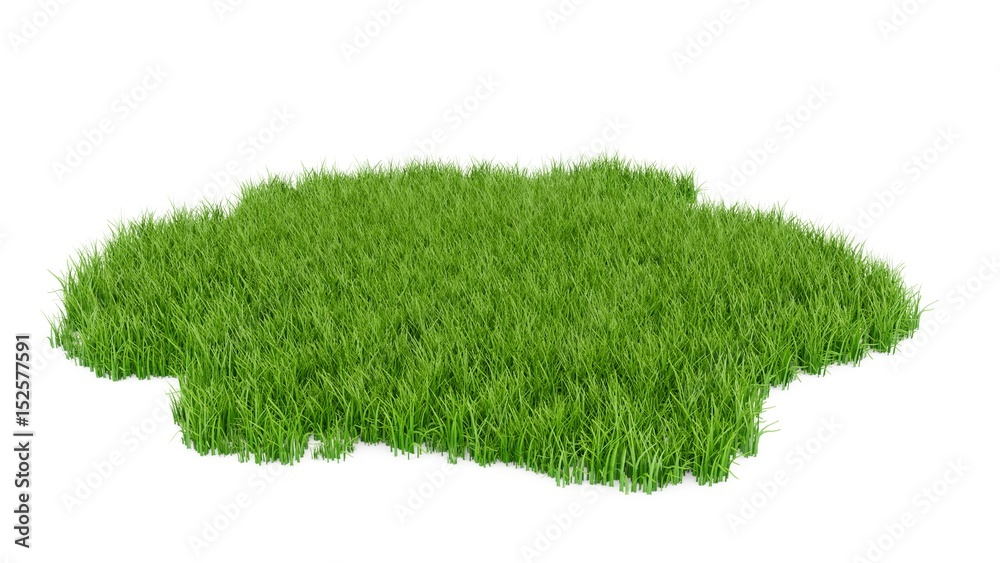 Fototapety, obrazy: 3D Rendering green grass field isolated on white background