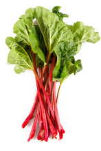 Fresh Rhubarb Isolated On White
