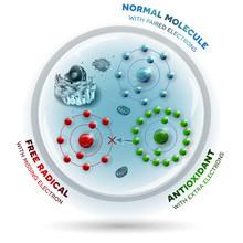 How Antioxidant Works Against ...