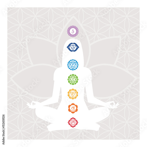 Chakras and energy body Canvas Print