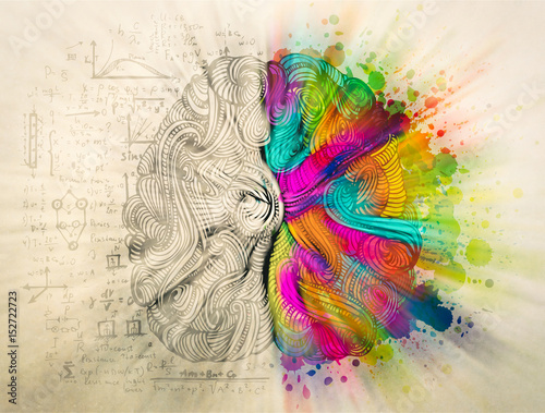 Brain doodle concept about creative right side and logical left side Canvas Print