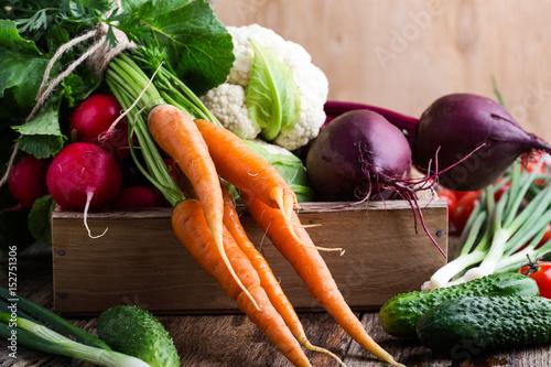 Fototapeta Harvest still life. Food composition of fresh organic vegetables obraz na płótnie