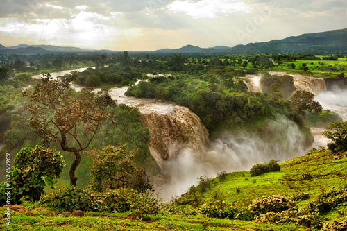 Canvas Prints Forest river Blue Nile Falls, Ethiopia, Africa
