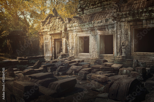 Tuinposter Rudnes Ancient,abandoned temple of Angkor Wat, Cambodia