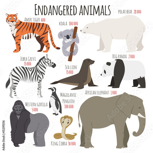 Different kinds deleted species dying rare uncommon red book animals characters vector illustration Wall mural