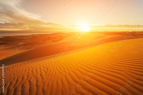Foto op Aluminium Droogte Picturesque desert landscape with a golden sunset over the dunes