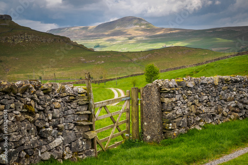 Foto auf Gartenposter Hugel Pen-y-ghent or Penyghent is a fell in the Yorkshire Dales. It is one of the Yorkshire Three Peaks