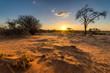 canvas print picture - Sonnenuntergangs-Stimmung in der Kalahari