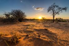 Sonnenuntergangs-Stimmung In Der Kalahari