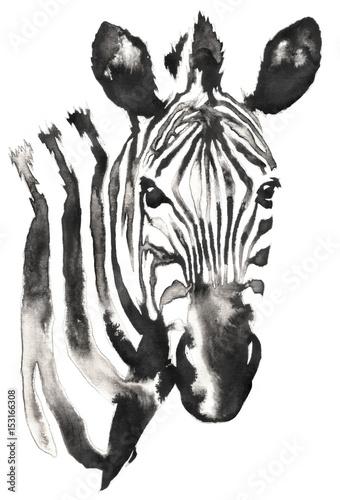 czarno-bialy-monochromatyczny-obraz-z-wody-i-atramentu-zebra-glowa-zebry