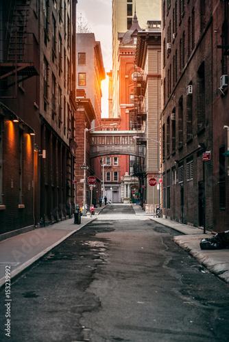 Foto auf Gartenposter Schmale Gasse Red bricks building at New York City street at sunset time.