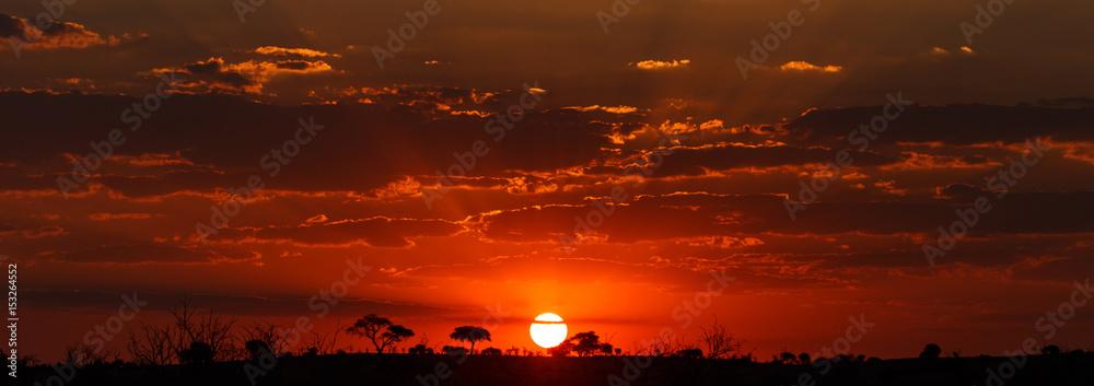 Fototapety, obrazy: Sunset - Chobe N.P. Botswana, Africa