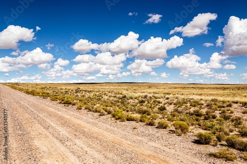 wasteland, lonelyness dirt road in the desert with clouds Poster
