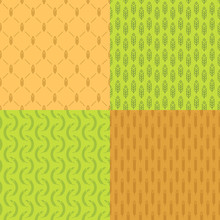 Ear Seamless Pattern Set With Wheat On Different Background For Natural Product Store