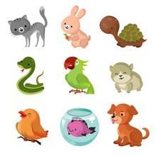 Pets Domestic Animals Vector F...