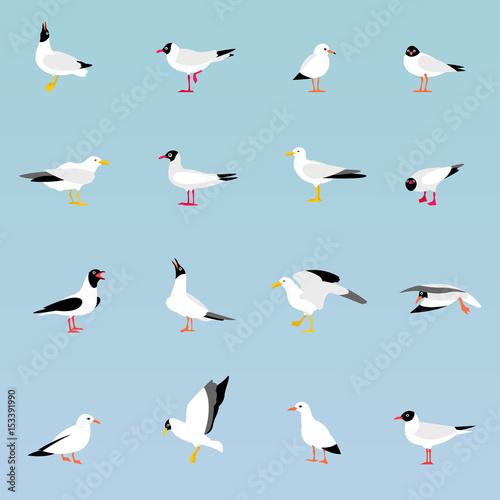 Vector set of beautiful seagulls. Wall mural