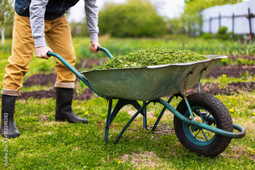Photo Farmer is holding old wheelbarrow full of grass at green summer garden background