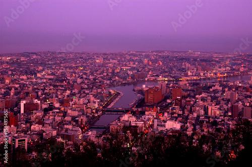 Foto op Plexiglas Crimson 徳島市夜景