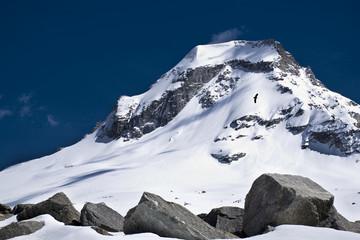 Primo piano sulla vetta innevata del Ciarforon, nel gruppo del Gran Paradiso,con l'aquila che volteggia lenta sotto di esso.