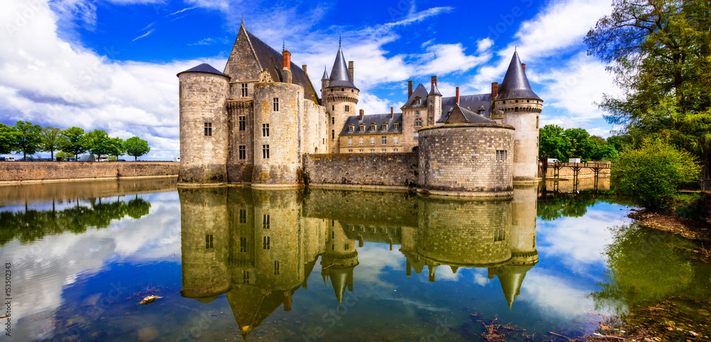 Fototapety, obrazy: Beautiful medieval castle Sully-sul-Loire. famous Loire valley river in France
