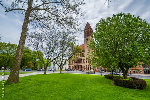 Fotografie, Tablou  Trees and City Hall, in Albany, New York.