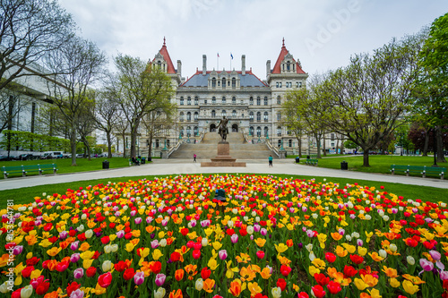 Photo Tulips and The New York State Capitol, in Albany, New York.