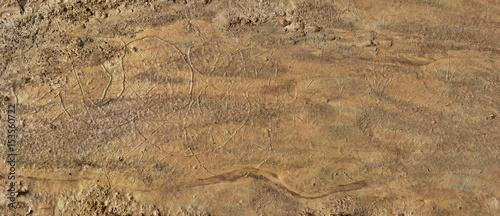 Fotografía Artificial Martian Terrain Panorama