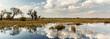 canvas print picture - Okavango Delta, Africa