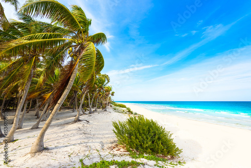 Fotografie, Obraz  Paradise beach at caribbean coast of Mexico - tropical destination for vacation
